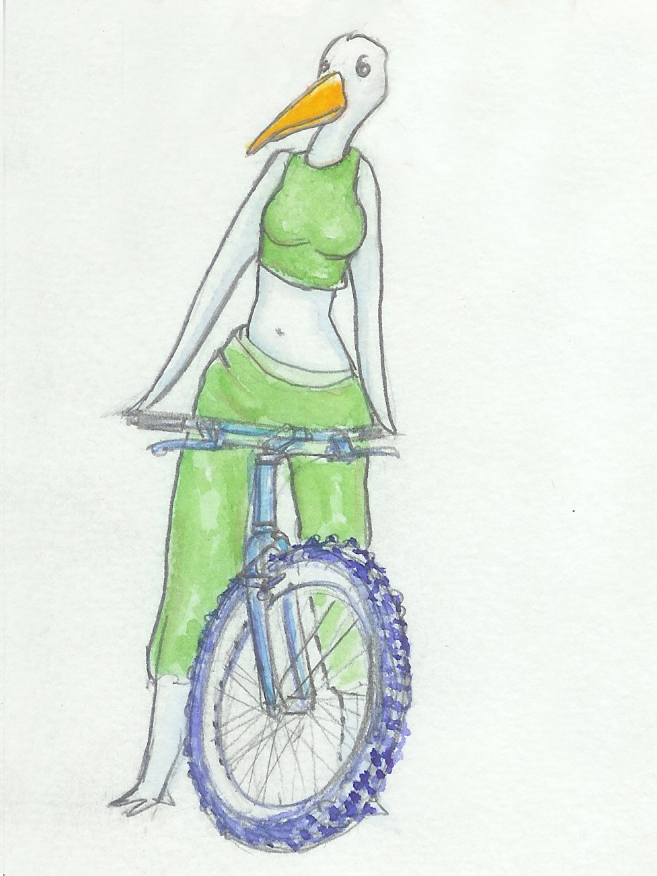 green-egret-blue-mt-bike